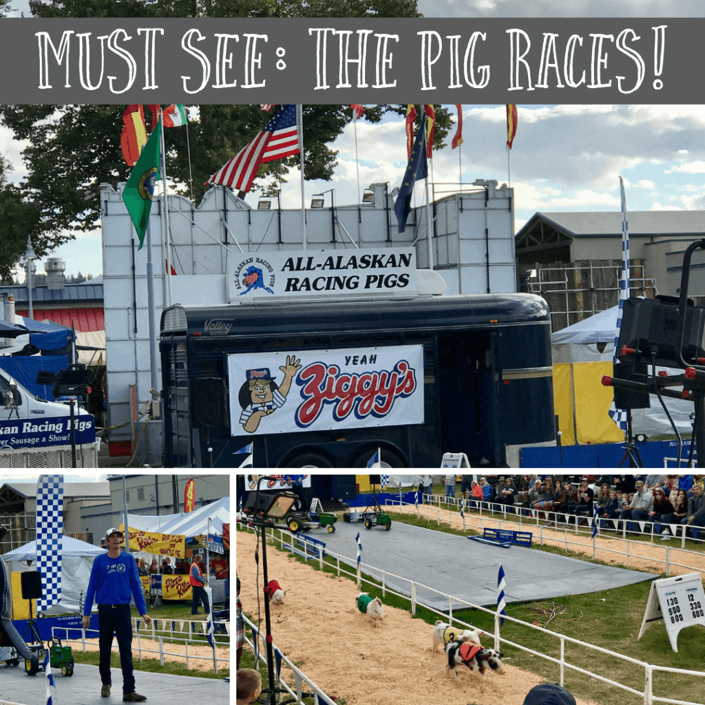 image of The Pig Races at the Spokane Fair