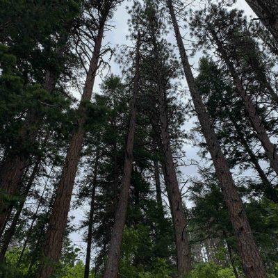 hiking around spokane