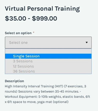 virtual personal training session options