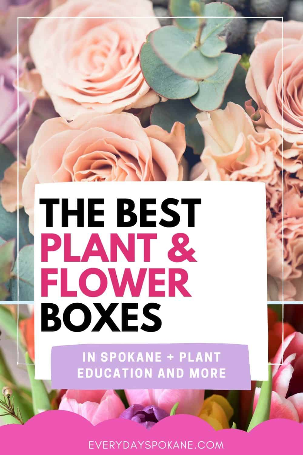 plant subscription boxes