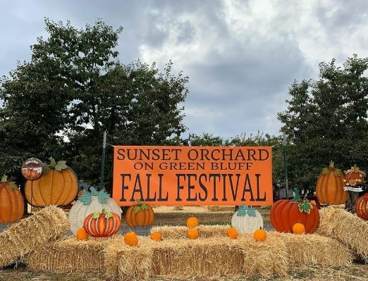 photo of sunset orchard pumpkin patch