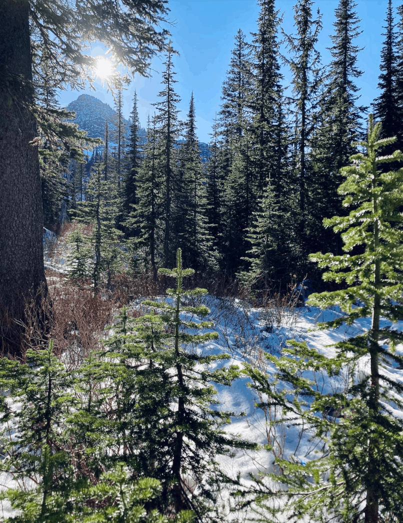 view of Bottleneck Lake and Snow Lake Trail-Kaniksu National Forest