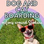 dog boarding options spokane